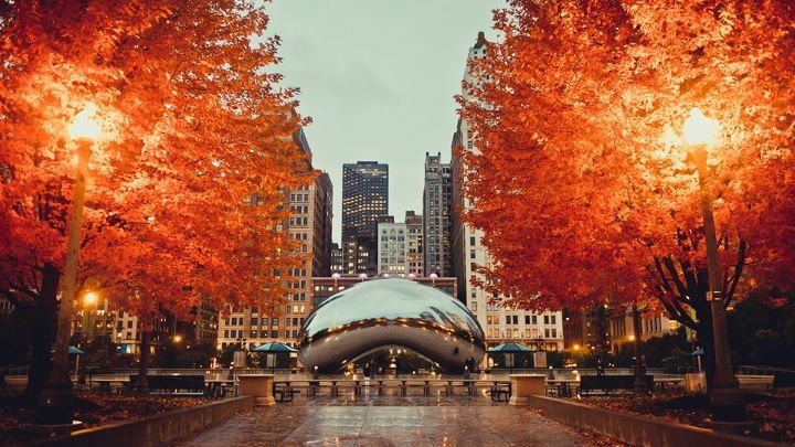 chicago-fall
